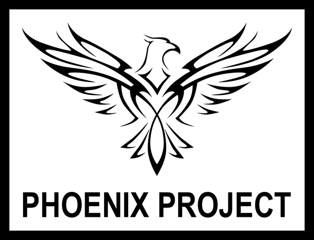 Roma Laser Games - Phoenix Project